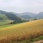 Aussicht zwischen Benkerjoch und Gipf-Oberfrick
